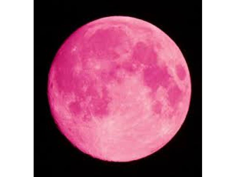 Pink Full Moon Party