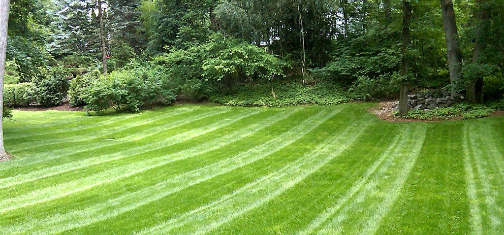 Lawncare Work With Nature Not Against It Summit Nj Patch