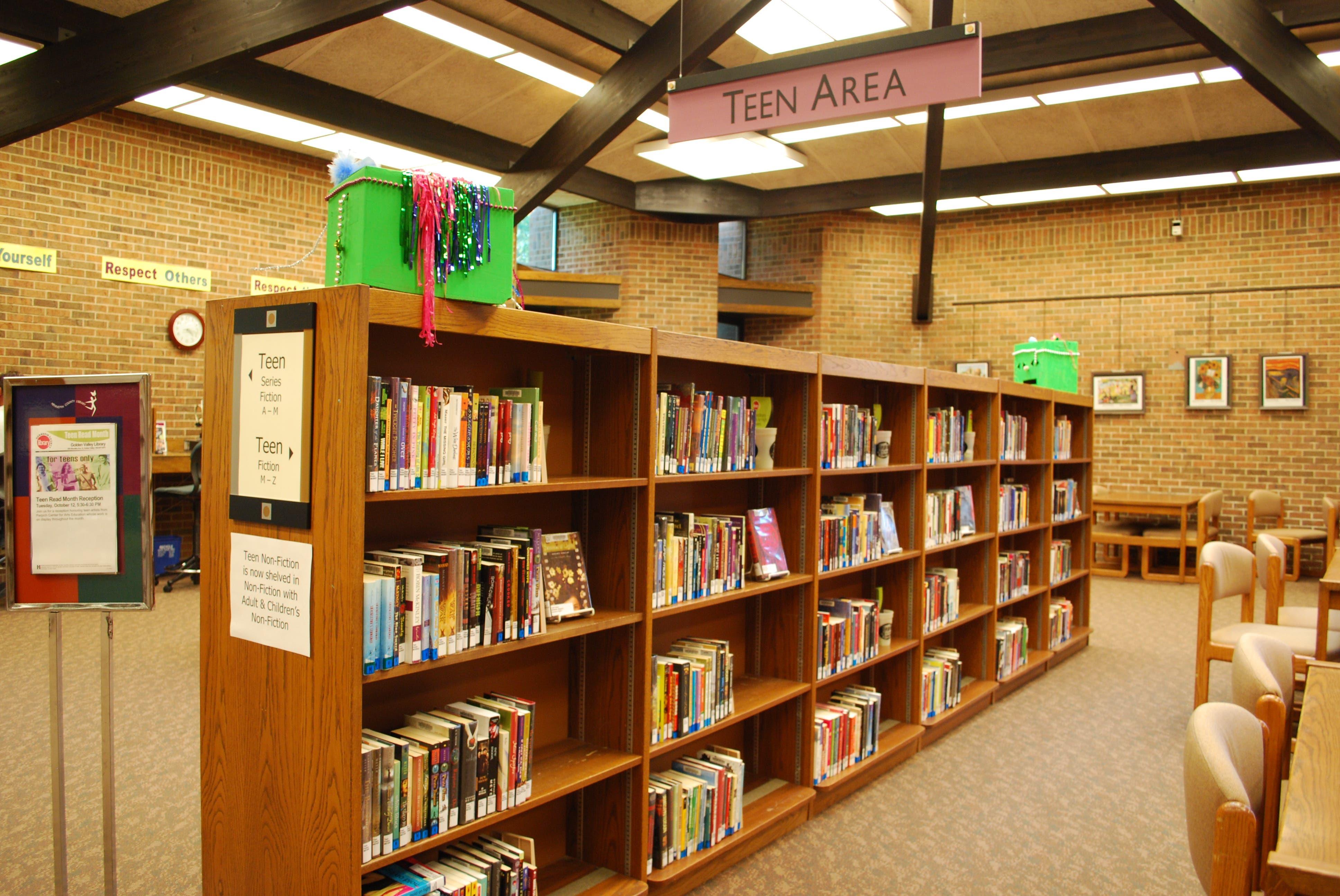 Rochester mn public library homework help