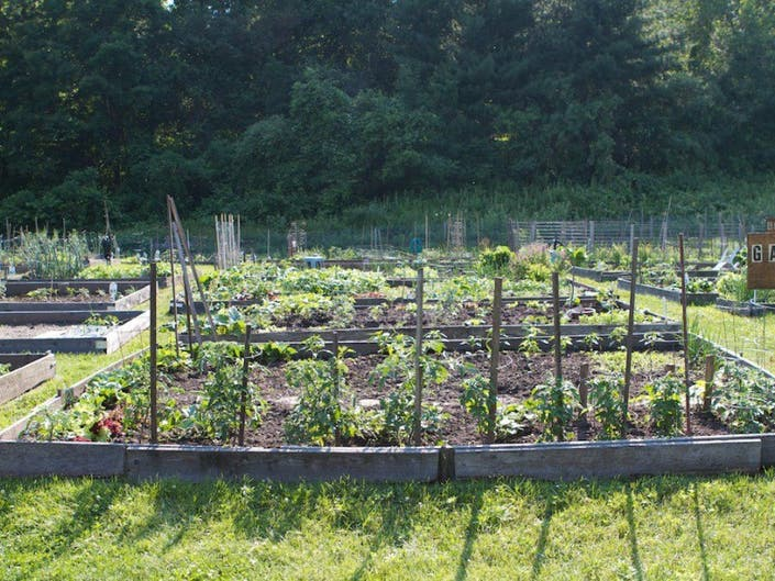 Viewfinder: Heritage Village Gardens | Southbury, CT Patch
