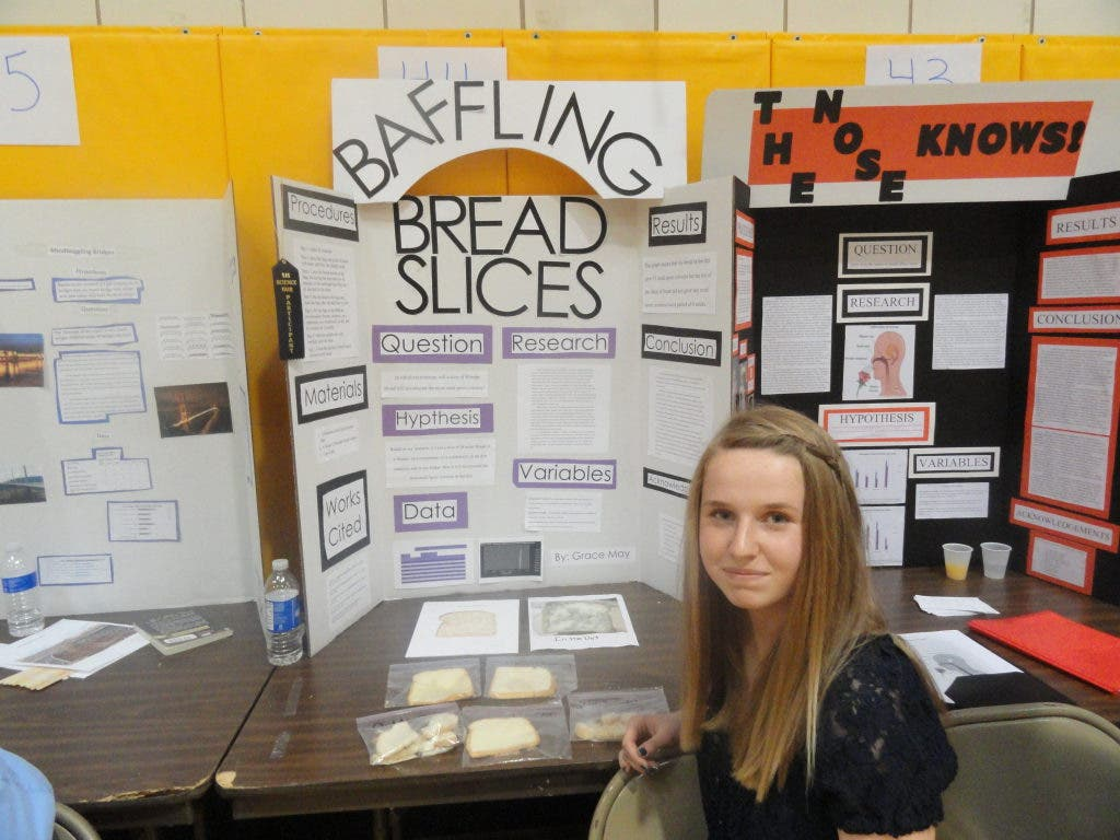 fair science projects joseph st patch students