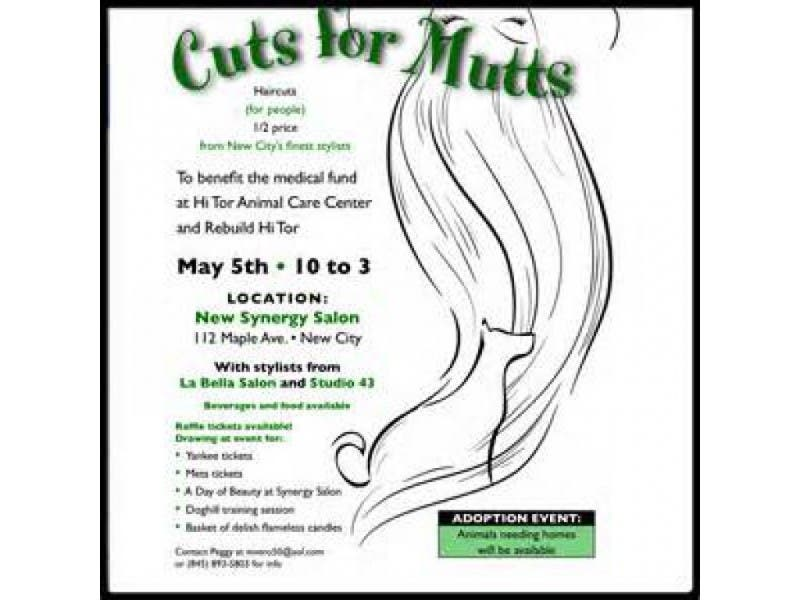 cuts for mutts benefit for hi tor animal shelter new city ny patch