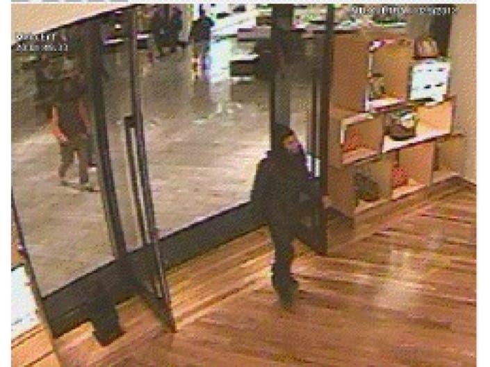 fab30b7d88d681 ... Ross Police Release Surveillance Pictures of Louis Vuitton Handbag  Heist at Ross Park Mall-0 ...