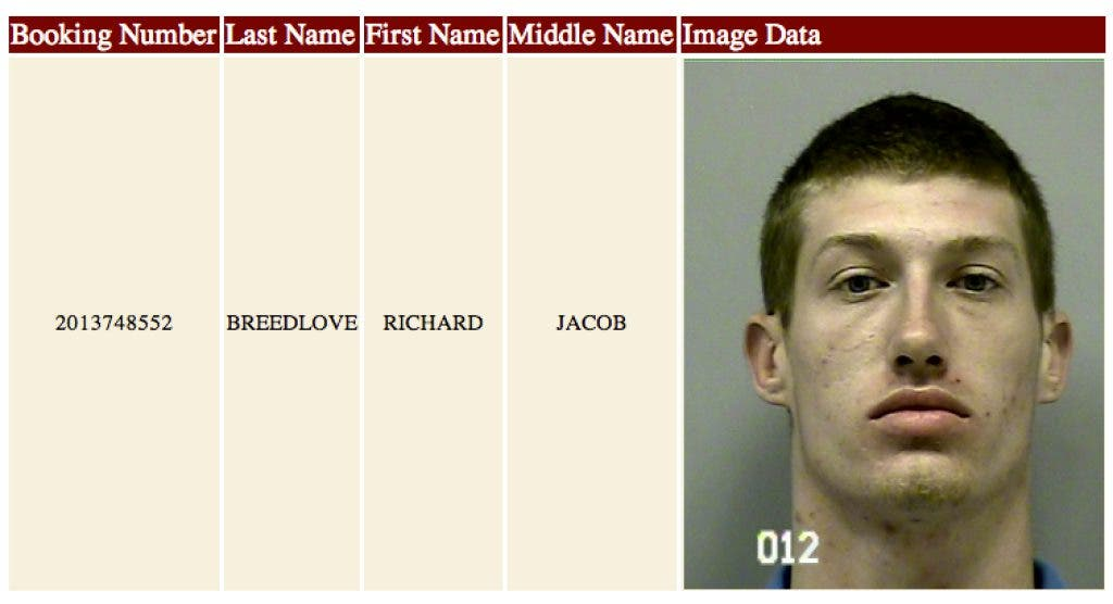 Buford Docket Book Reckless Driving Disorderly Conduct