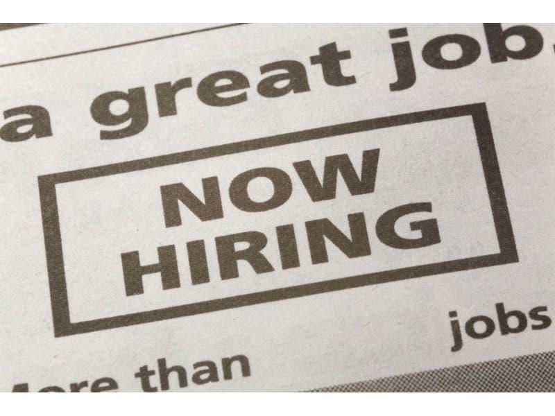 help wanted: executive and management jobs near pelham   pelham, ny