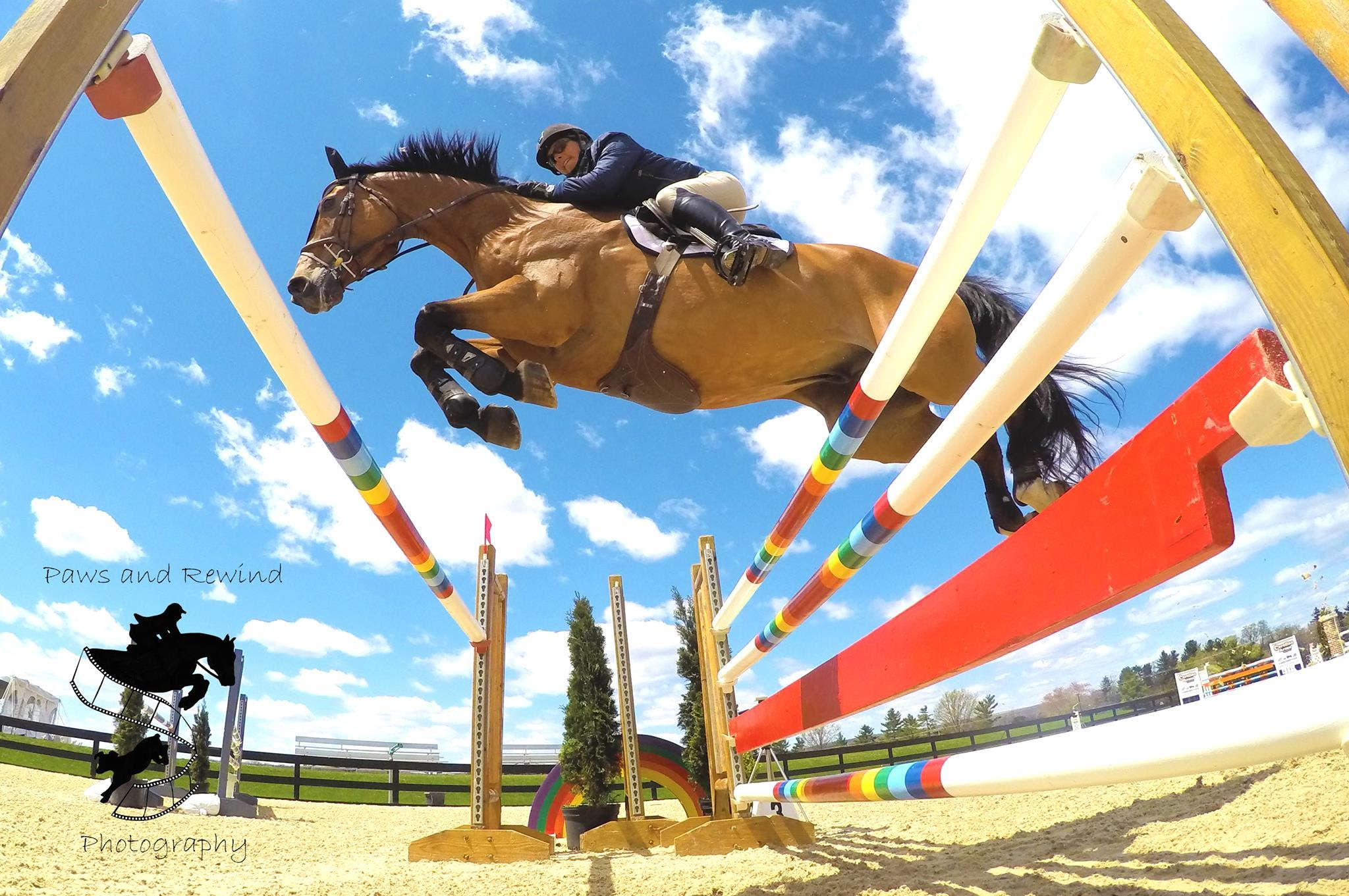 Free Family Fun June 28 July 5 And July 12 At Princeton Show Jumping Free Horse Show Pony