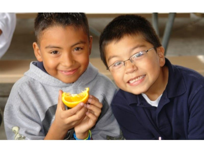 Back to School: 5 Tips for Packing a Nutritious Lunch