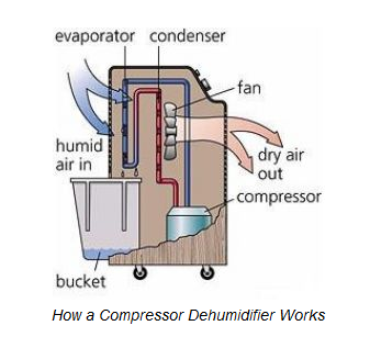 Dehumidifier–5 Signs Your Home Thinks It's a Sponge