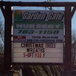 30 Christmas Trees All 5ft To 10ft Trees 30 Nanuet