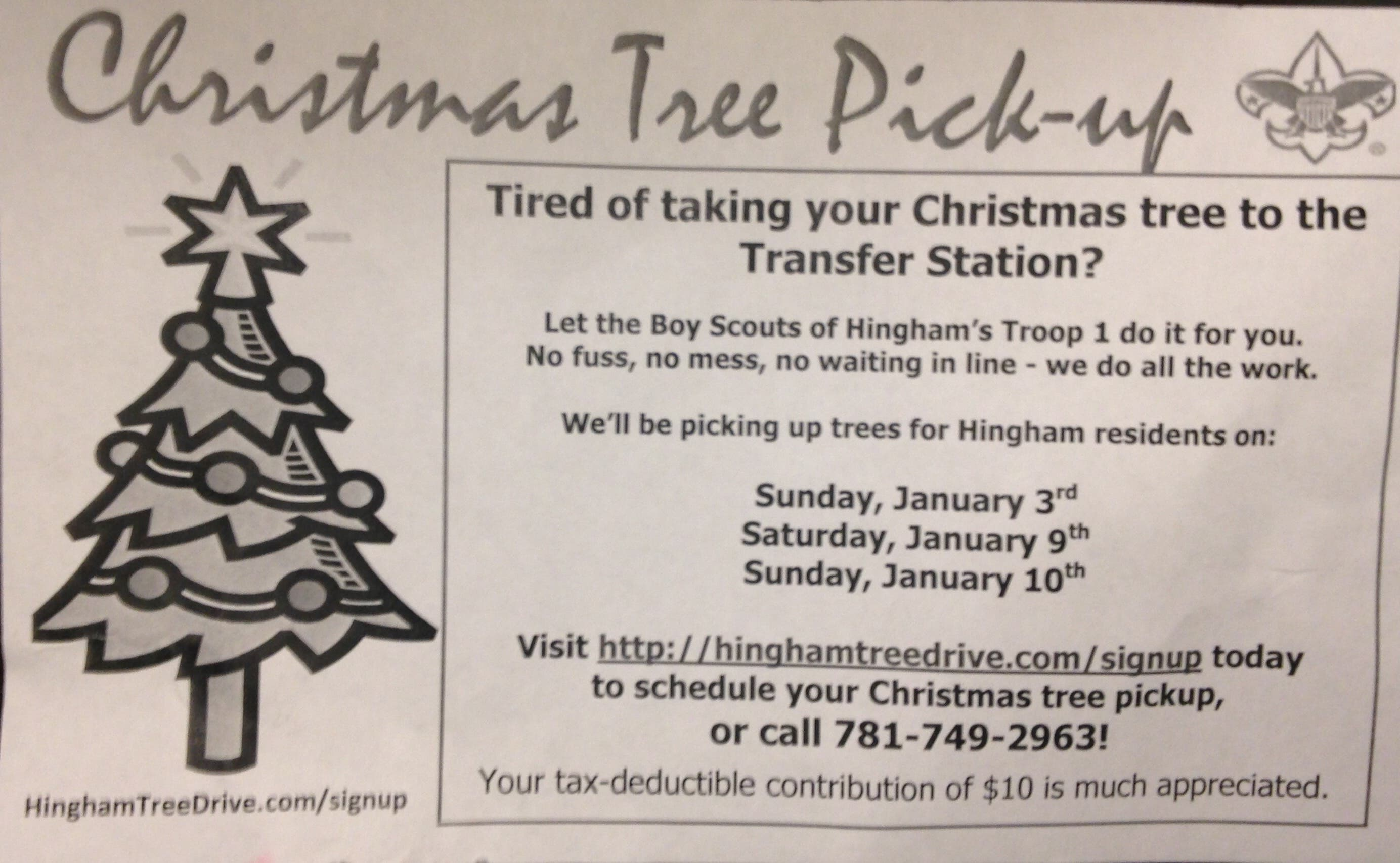Christmas Tree Pick Up.Boys Scouts Of Hingham Offer Christmas Tree Pick Up