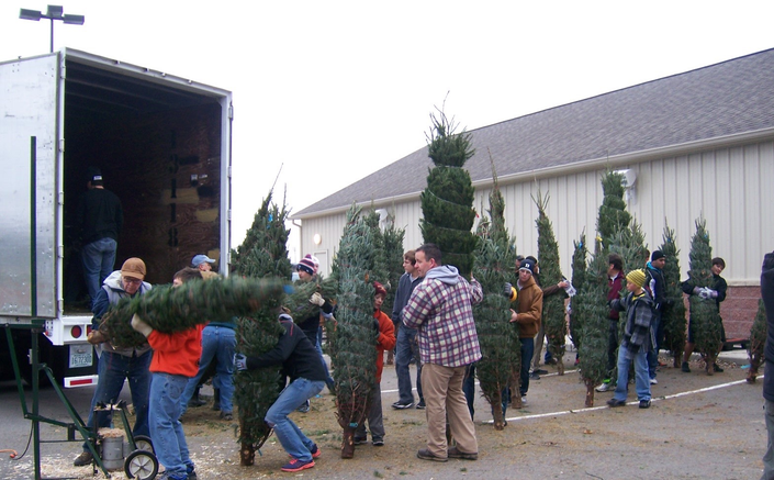 Dexter Lions Club 'Christmas Trees With A Heart Sale
