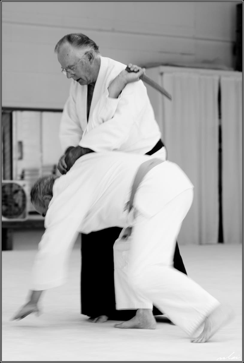 Aikido Martial Arts Course In ISD 196 Community Ed | Eagan