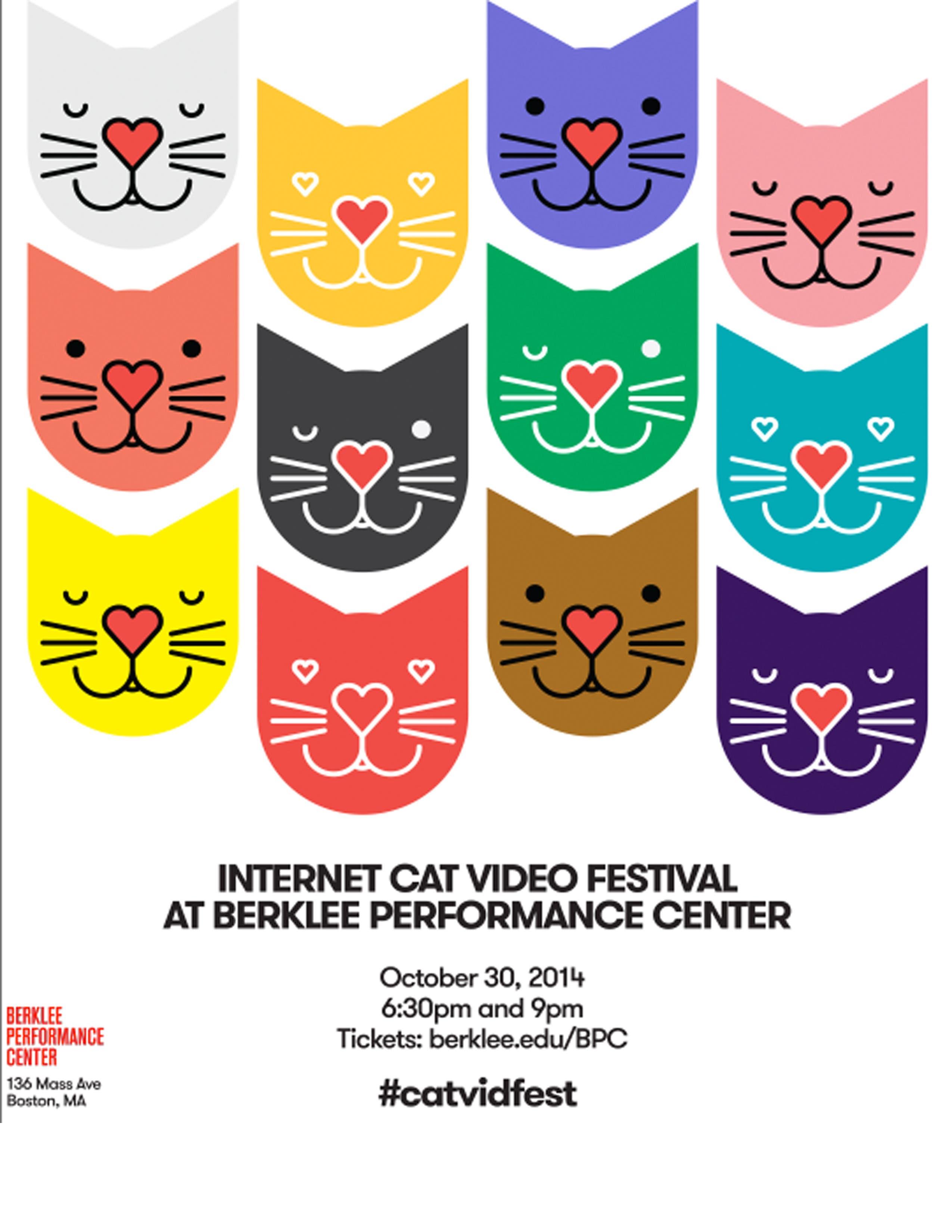 2014 Internet Cat Video Film Festival | Fenway, MA Patch