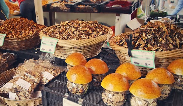 Medicinal Mushrooms That Can Fight Cancer Ramsey Nj Patch