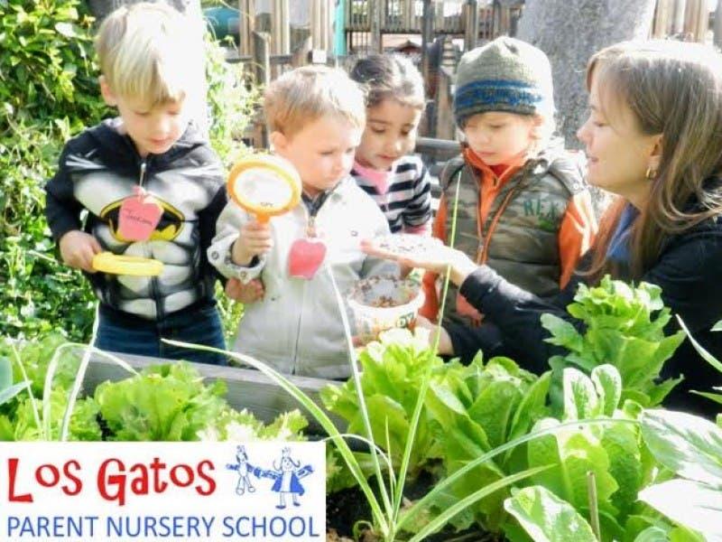 Los Gatos Pa Nursery School Hosting Open House