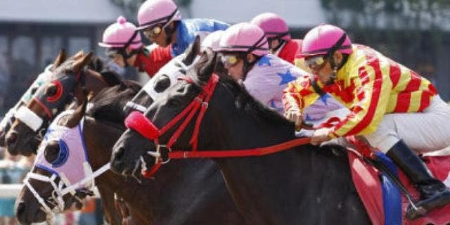 Off track betting morristown nj zip melbourne star wheel betting