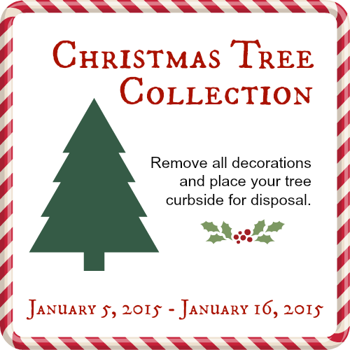 Christmas Tree Disposal Starts Jan. 5