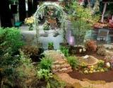 2015 boston flower & garden show | middletown, ri patch