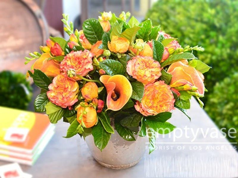 Interesting Facts You Didnt Know About Carnations Beverly Hills