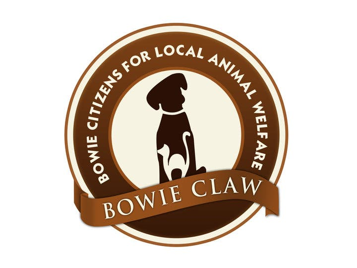 Bowie Claw On Fox 5 News As Bowie Maryland Is Featured On