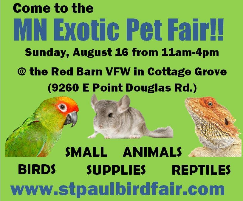 Come To The Exotic Pet Fair In Cottage Grove Sunday Woodbury Mn Patch