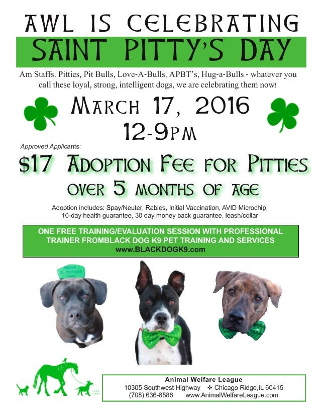 Animal Welfare Hosts St Pitty Day Pet Adoption Special Tinley Park Il Patch