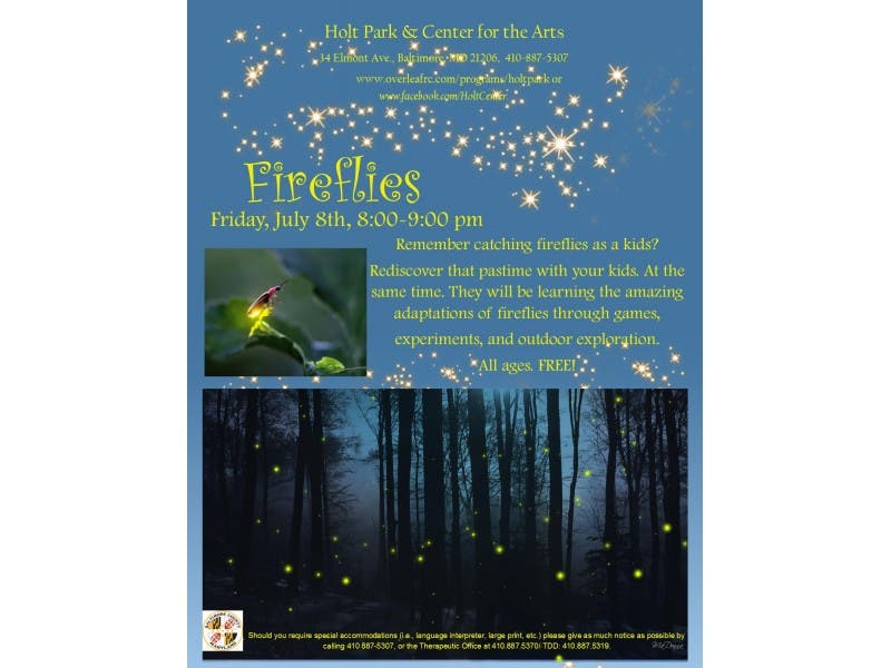Fireflies!