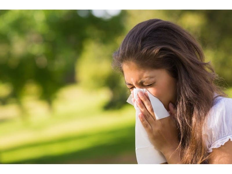 mountain cedar pollen levels creating misery for allergy sufferers