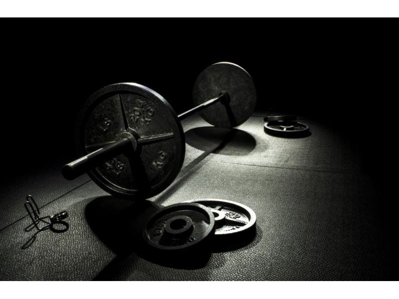 physical fitness in a sentence