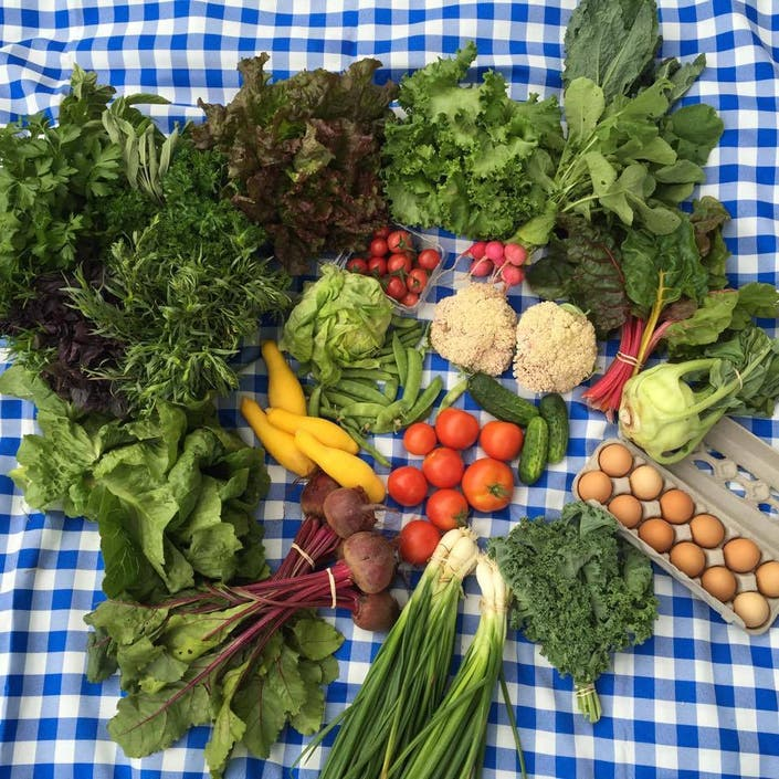 Simpaug Farms CSA And Bailey's Backyard Join To Bring