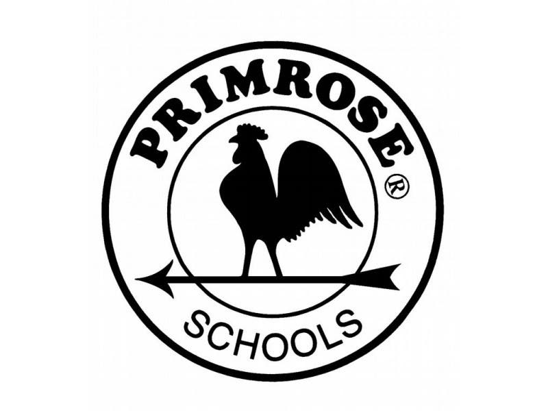 Free Summer Vpk Program To Be Offered At Primrose School At Collier