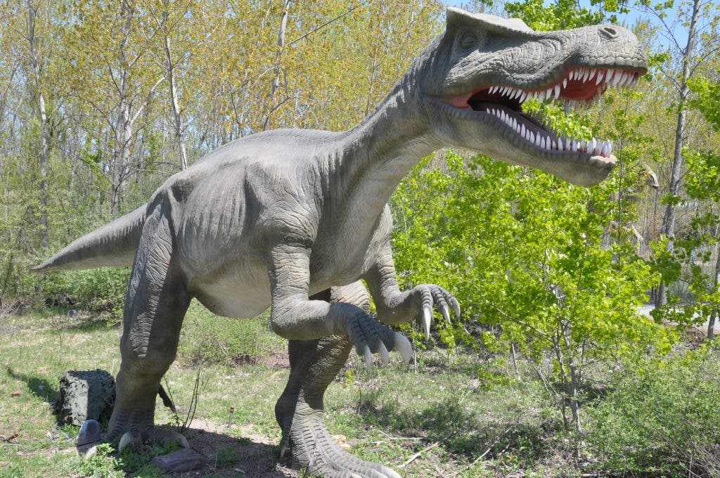 A Day Trip to See Dinosaurs at Jersey's Jurassic Park | Red