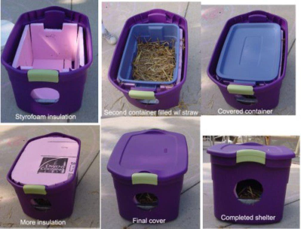 Outdoor Feral Cat Shelter Diy Wyandotte Mi Patch