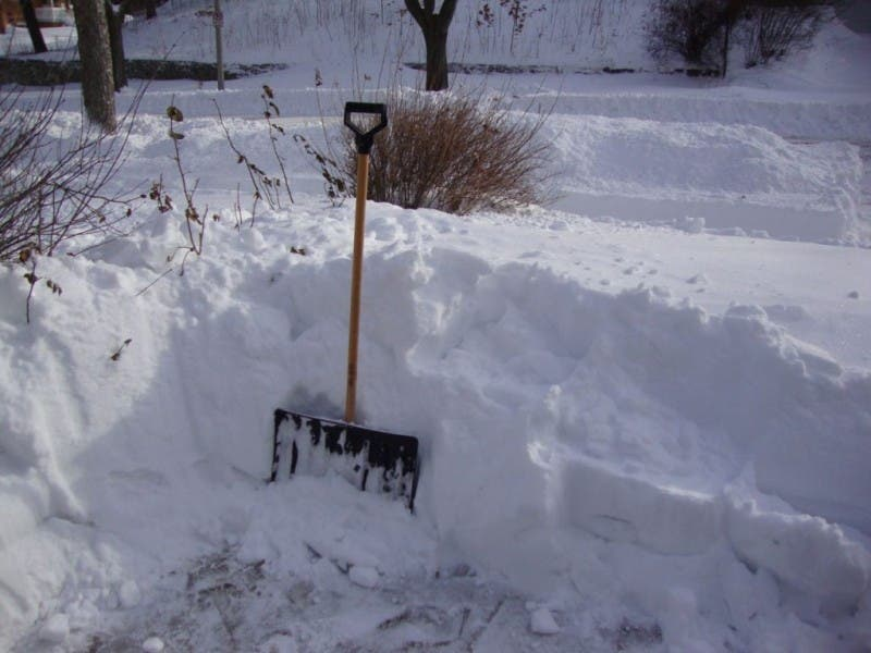 Groundhog Day What A Difference A Year Makes Wauwatosa Wi Patch