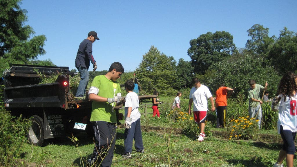 Greenwich Youth Conservation Project Greenwich Ct Patch
