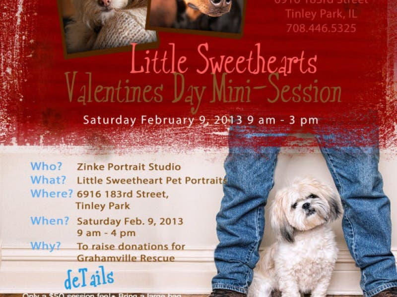 Little Sweethearts Pet Mini-Sessions and Fund Raiser
