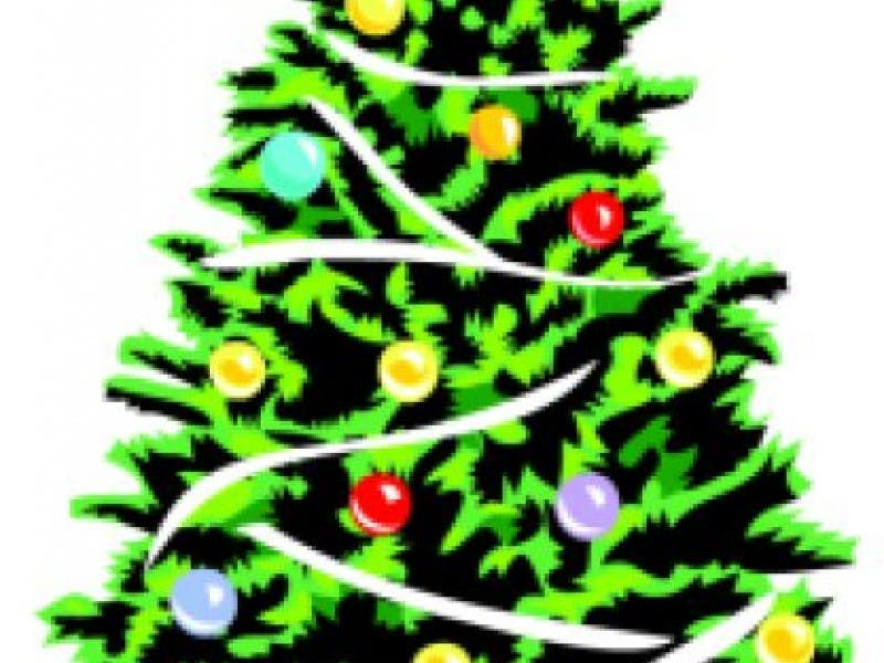 Recology To Help Compost Christmas Trees - Recology To Help Compost Christmas Trees San Carlos, CA Patch