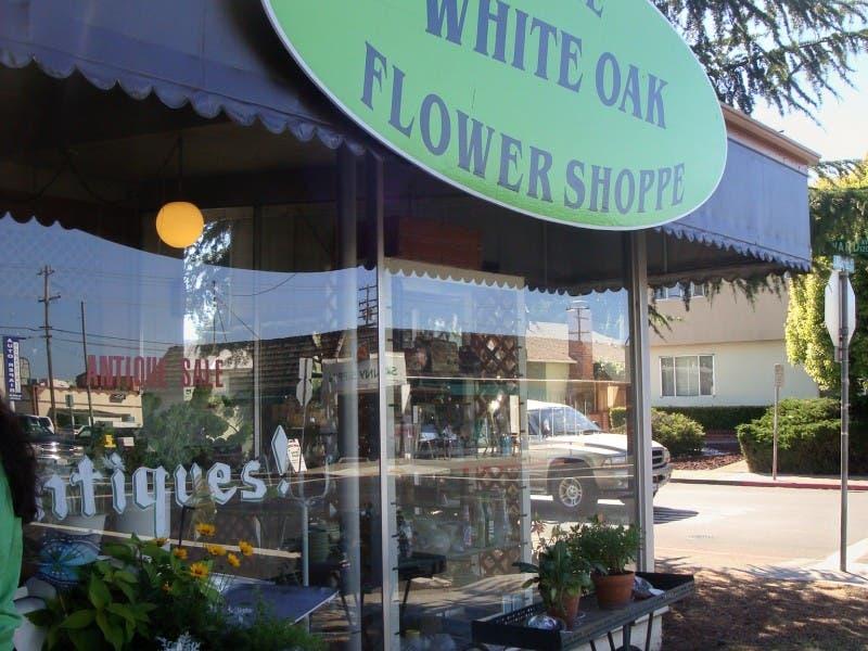 White oak flower shoppe bests the rest in readers choice poll san white oak flower shoppe bests the rest in readers choice poll mightylinksfo