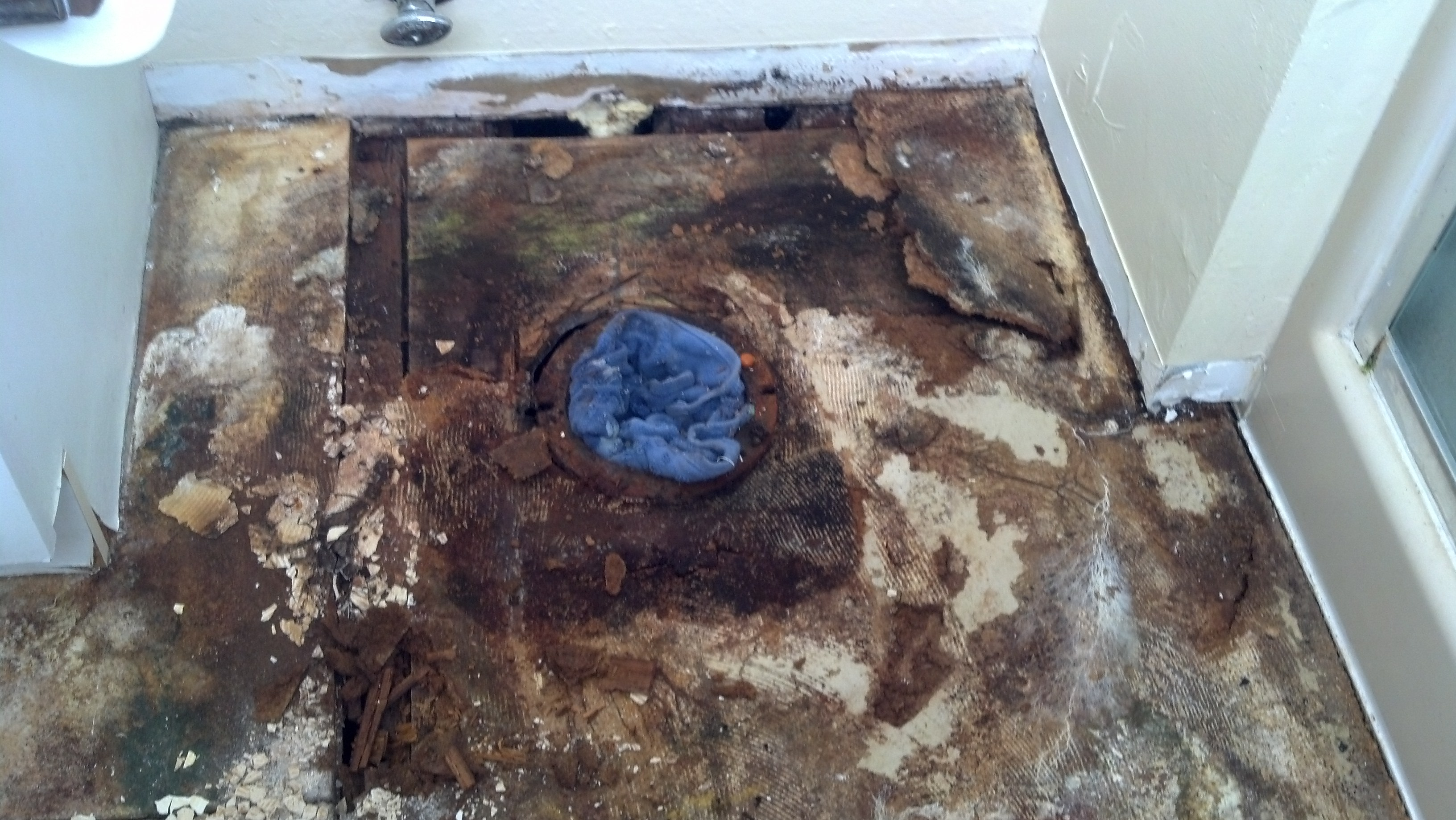 Importance of replacing your sub-floor! | Rohnert Park, CA Patch