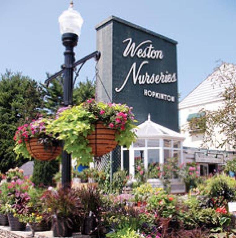 Farmers Market At Weston Nurseries Starts June 10