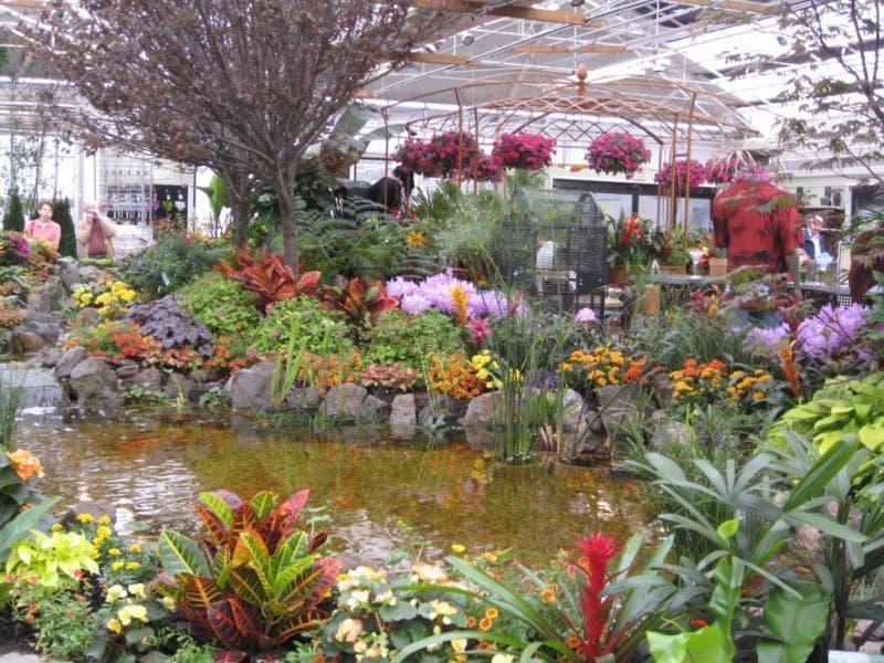 Hicks Nurseries Flower Garden Show