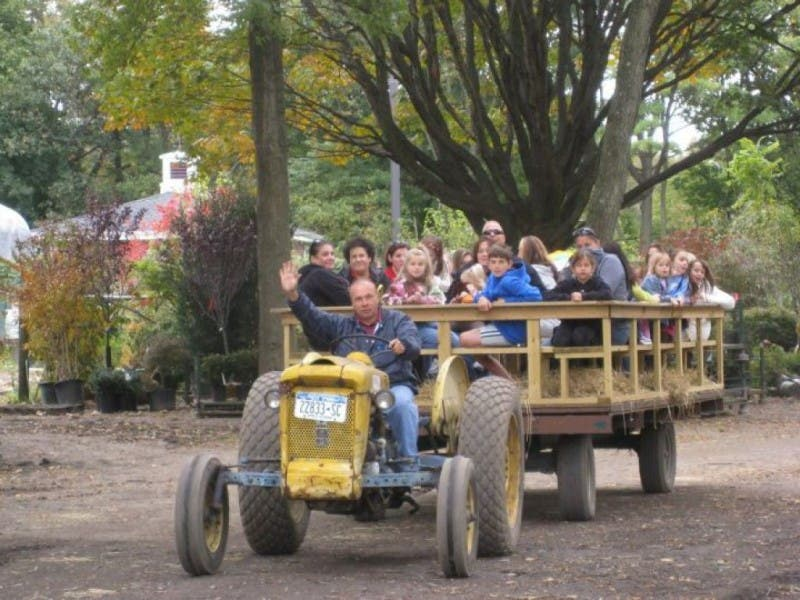 Fall Festival At Hicks Nurseries Inc 0