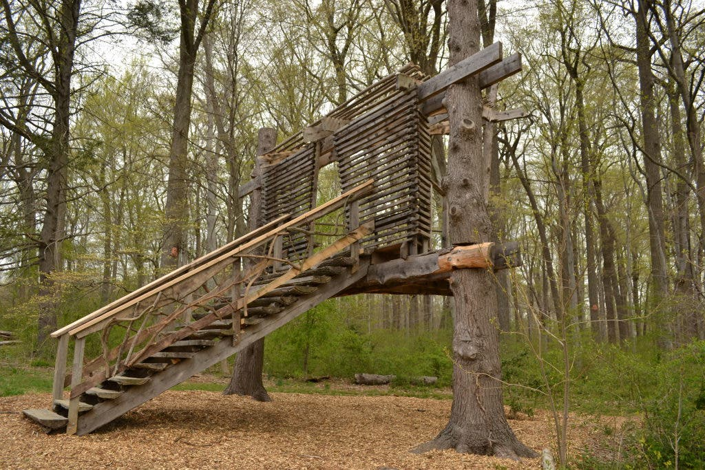 Picture of: Viewfinder Totally Terrific Treehouses Back At Tyler Arboretum Media Pa Patch