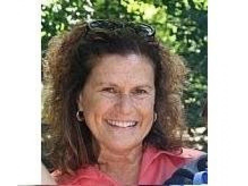 Msu Gifted And Talented Director Susan Paynter Resigns