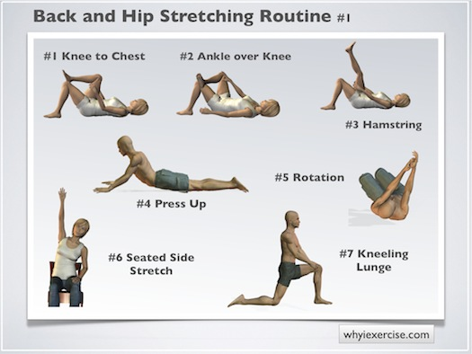 Image result for low back stretches