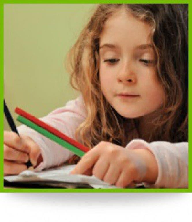 Russian school of math online homework