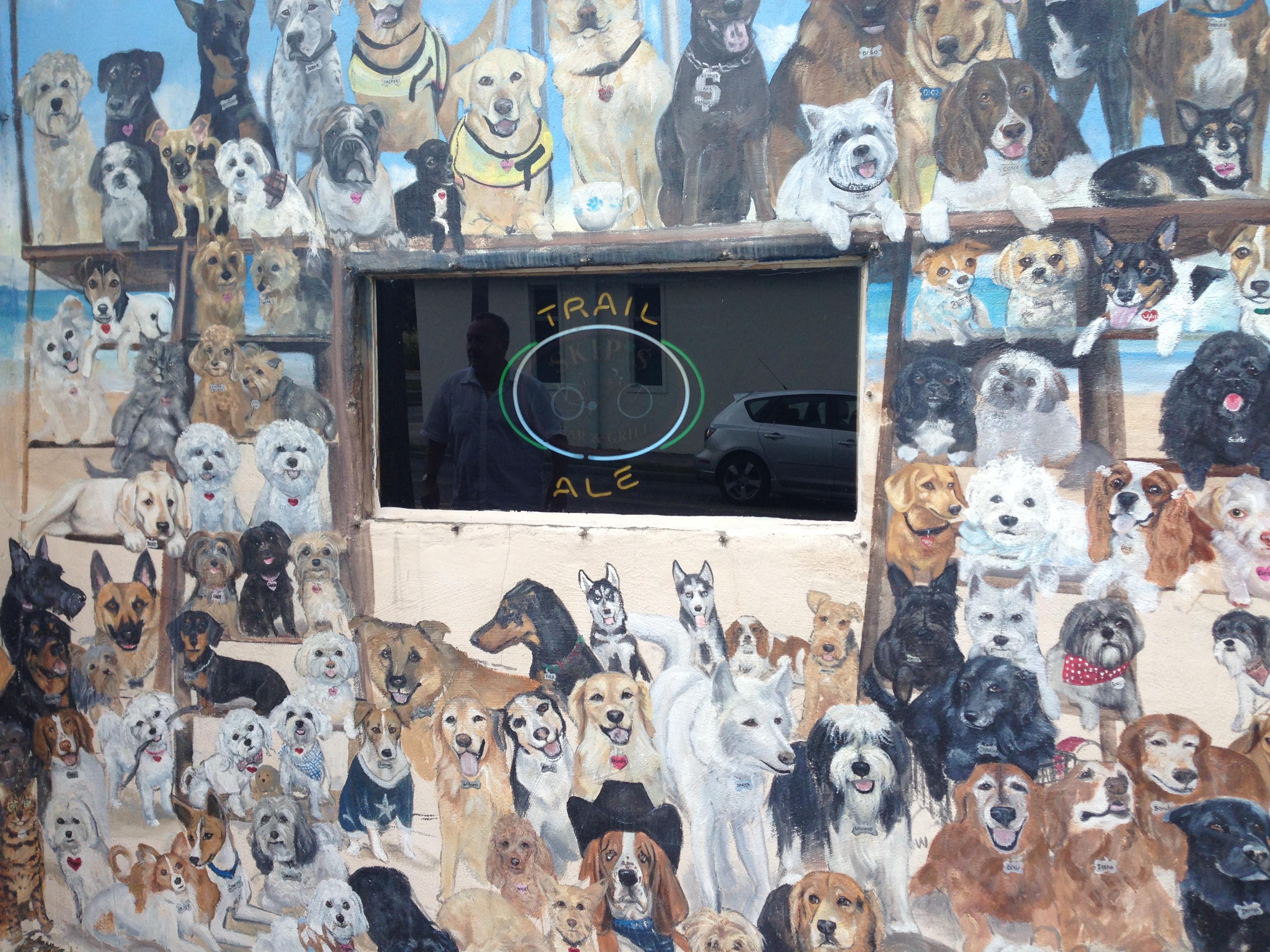 Dog Mural To Replace Skip's Dollar Bills   Dunedin, FL Patch
