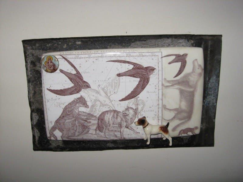 Athens georgia dating free artwork of rhinoceros facts