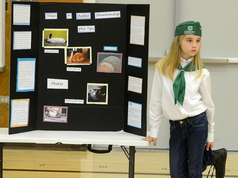 Solano County 4 H Presentation Day From Bees To Robotic Engineering