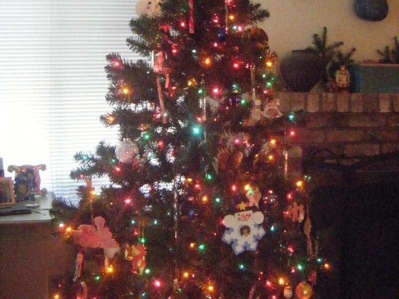 Christmas Tree Donation Program to Benefit Local Families